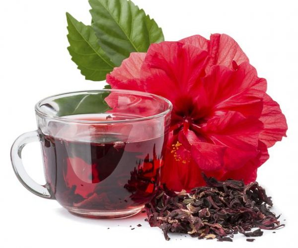 hibiscus-580567ef3df78cbc2803cd32